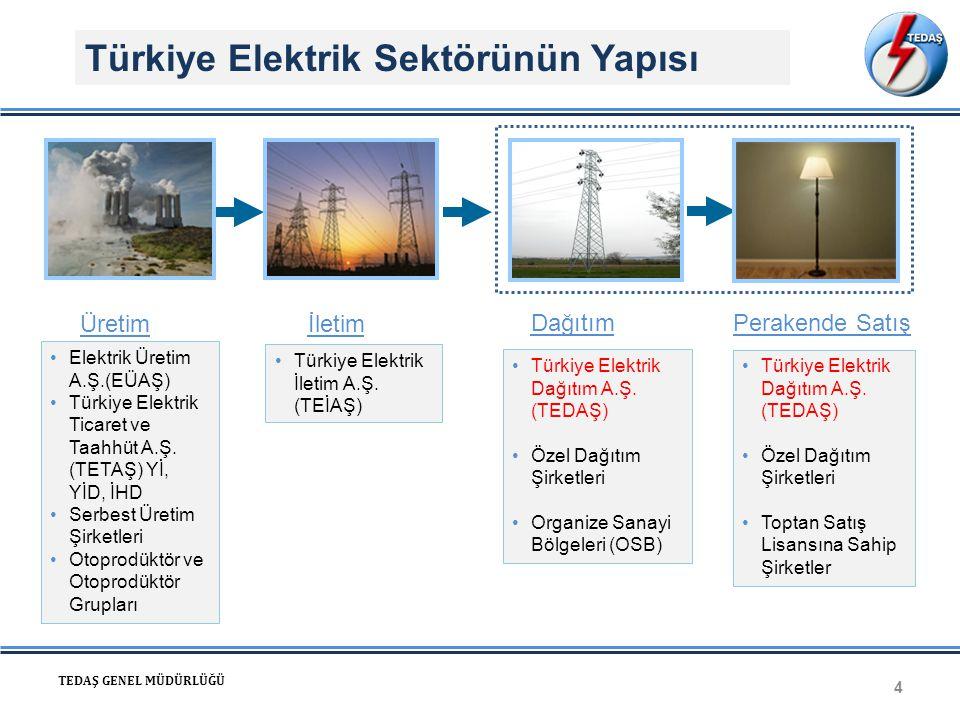 Türkiye Elektrik Sektörünün Yapısı