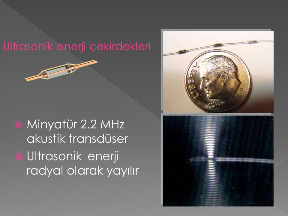 Minyatür 2.2 MHz akustik transdüser