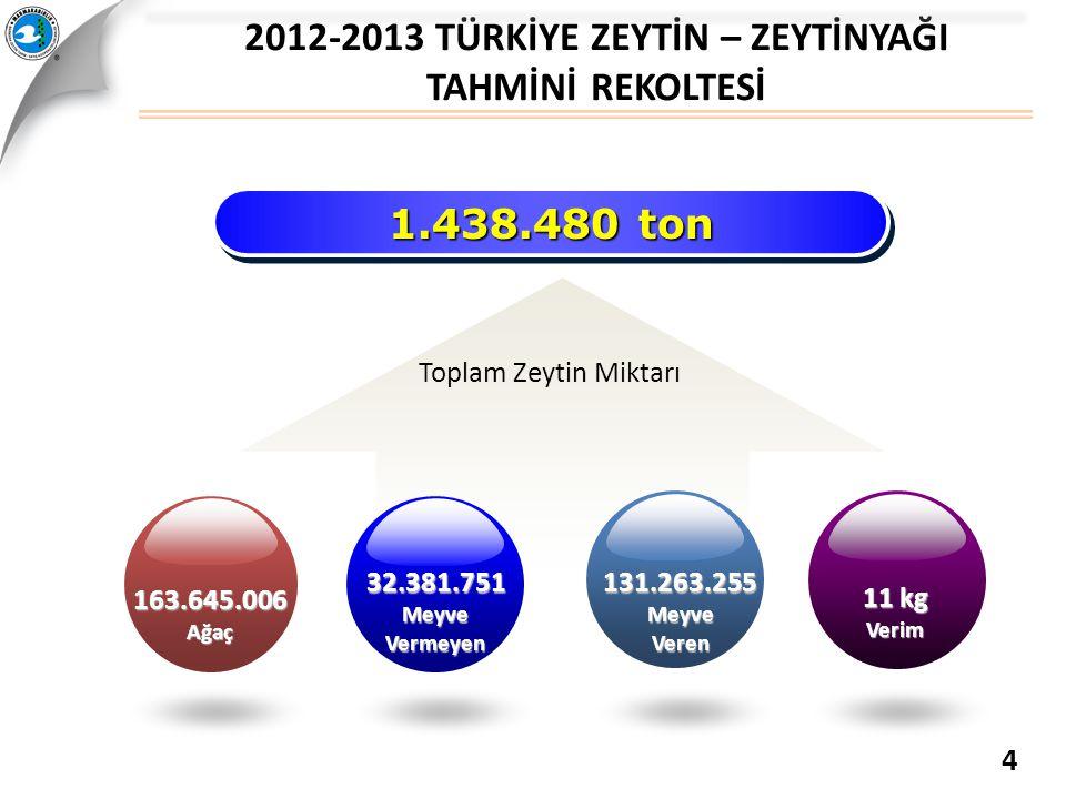 2012-2013 TÜRKİYE ZEYTİN – ZEYTİNYAĞI TAHMİNİ REKOLTESİ