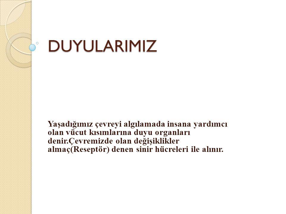 DUYULARIMIZ
