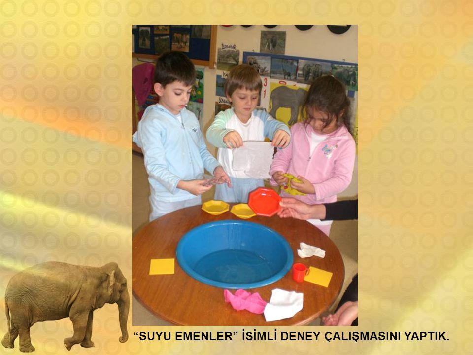 SUYU EMENLER İSİMLİ DENEY ÇALIŞMASINI YAPTIK.