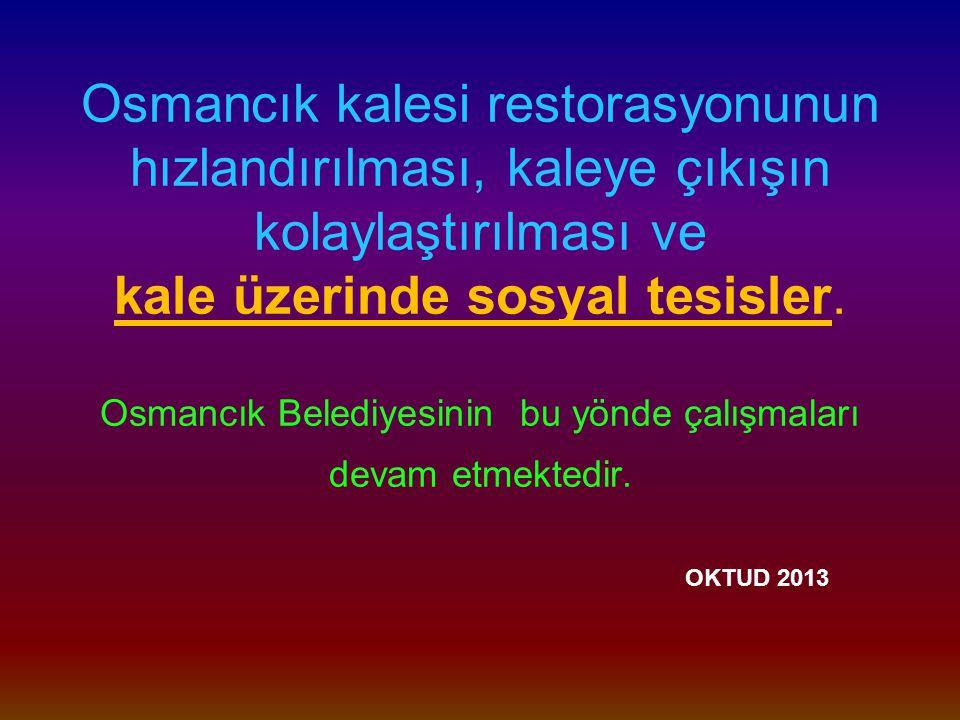 Osmancık kalesi restorasyonunun hızlandırılması, kaleye çıkışın kolaylaştırılması ve kale üzerinde sosyal tesisler.