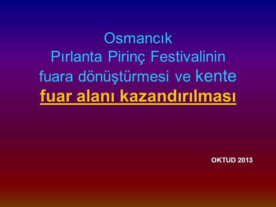 Osmancık Pırlanta Pirinç Festivalinin fuara dönüştürmesi ve kente fuar alanı kazandırılması OKTUD 2013