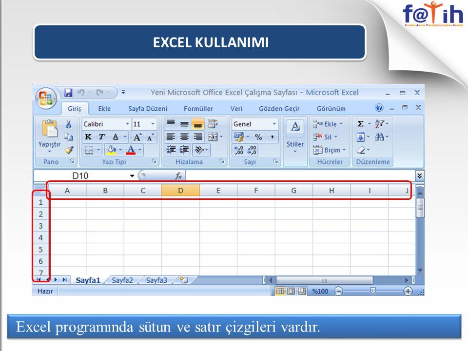 EXCEL KULLANIMI Excel programında sütun ve satır çizgileri vardır.