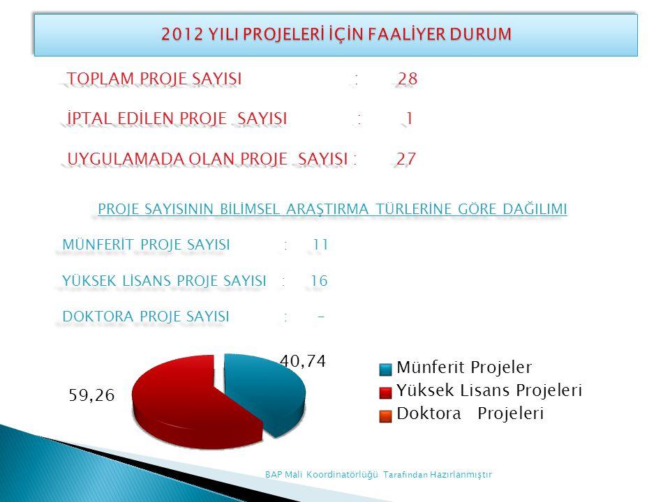 2012 YILI PROJELERİ İÇİN FAALİYER DURUM