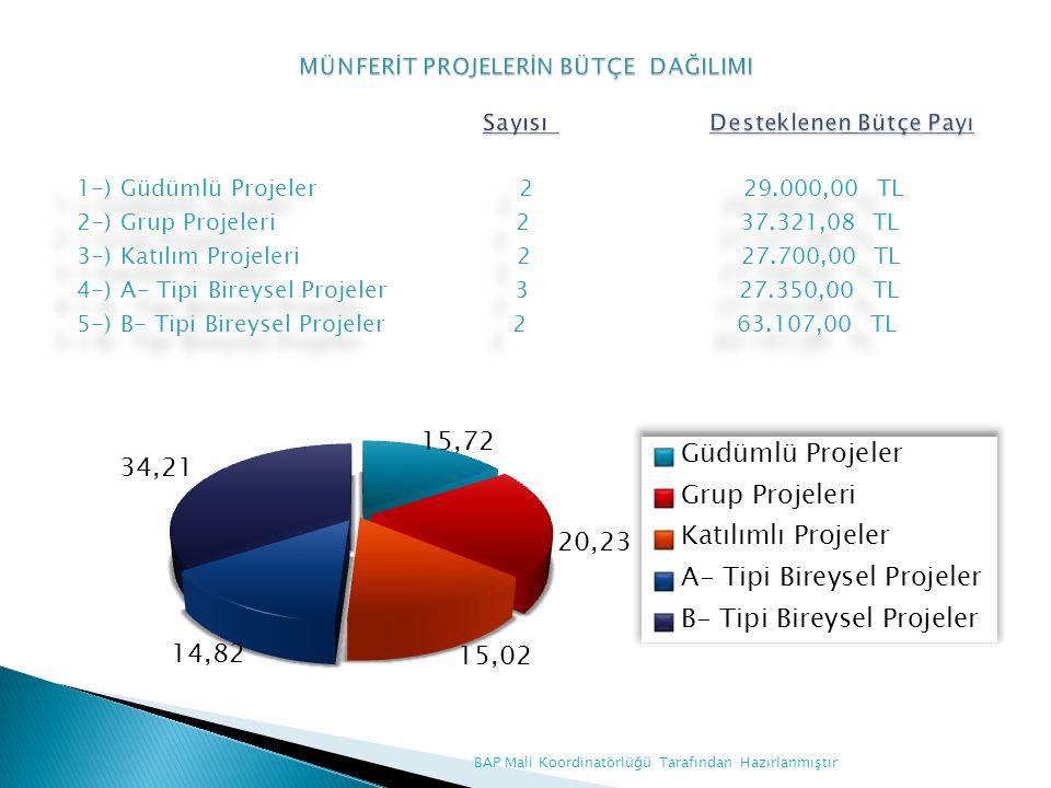 MÜNFERİT PROJELERİN BÜTÇE DAĞILIMI Sayısı Desteklenen Bütçe Payı