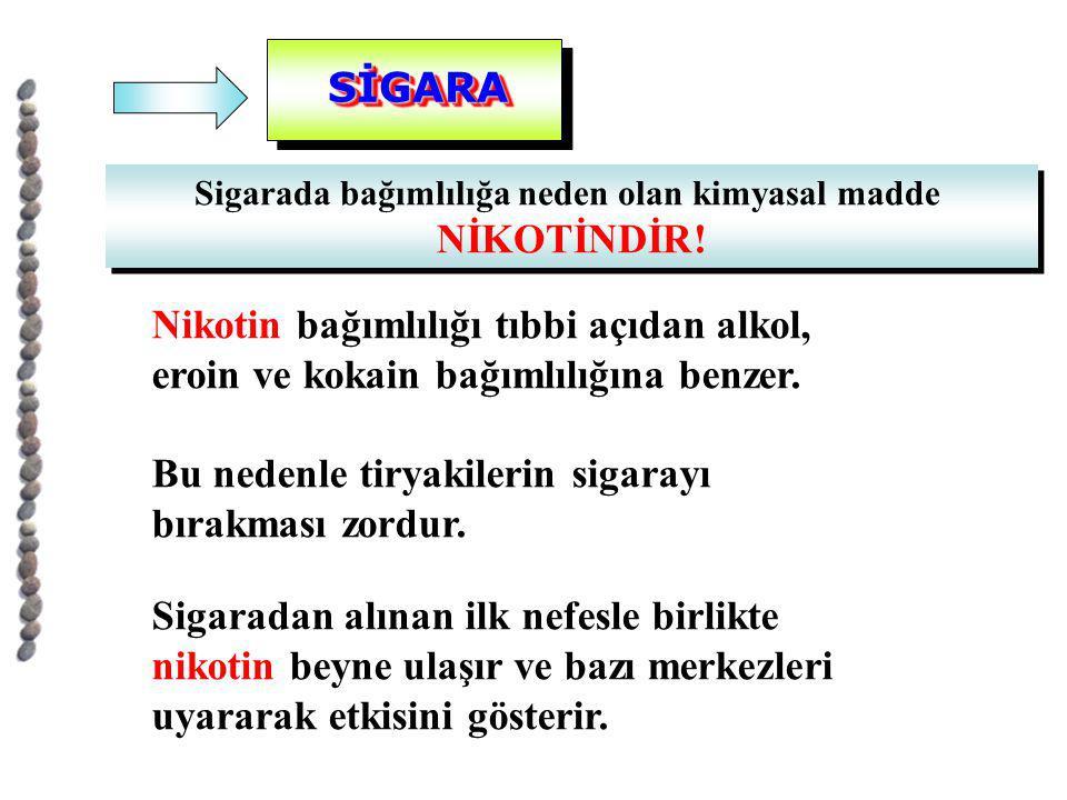 Sigarada bağımlılığa neden olan kimyasal madde
