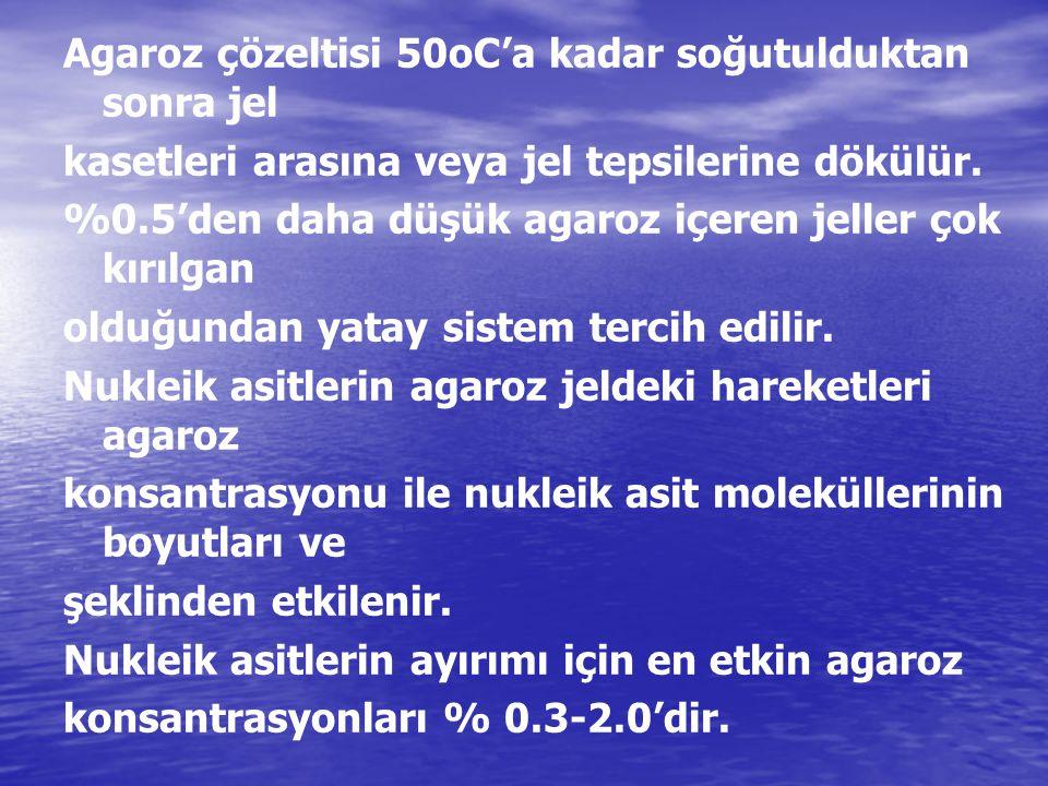 Agaroz çözeltisi 50oC'a kadar soğutulduktan sonra jel