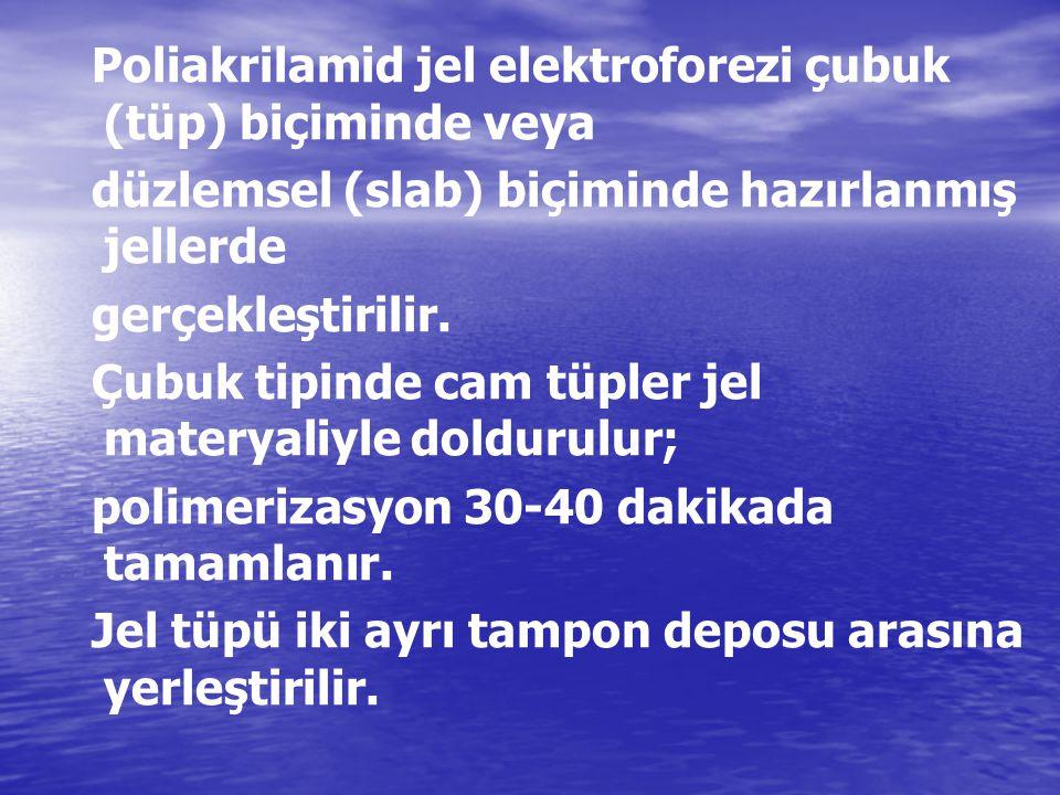 Poliakrilamid jel elektroforezi çubuk (tüp) biçiminde veya