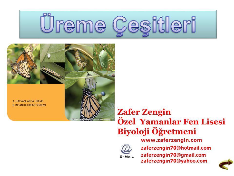 Üreme Çeşitleri Zafer Zengin Özel Yamanlar Fen Lisesi Biyoloji Öğretmeni. www.zaferzengin.com. zaferzengin70@hotmail.com.