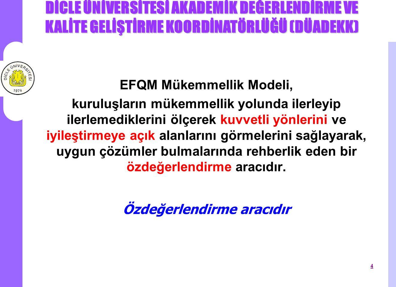 EFQM Mükemmellik Modeli, Özdeğerlendirme aracıdır