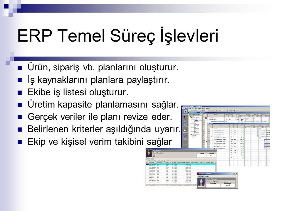 ERP Temel Süreç İşlevleri