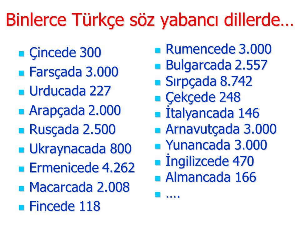 Binlerce Türkçe söz yabancı dillerde…