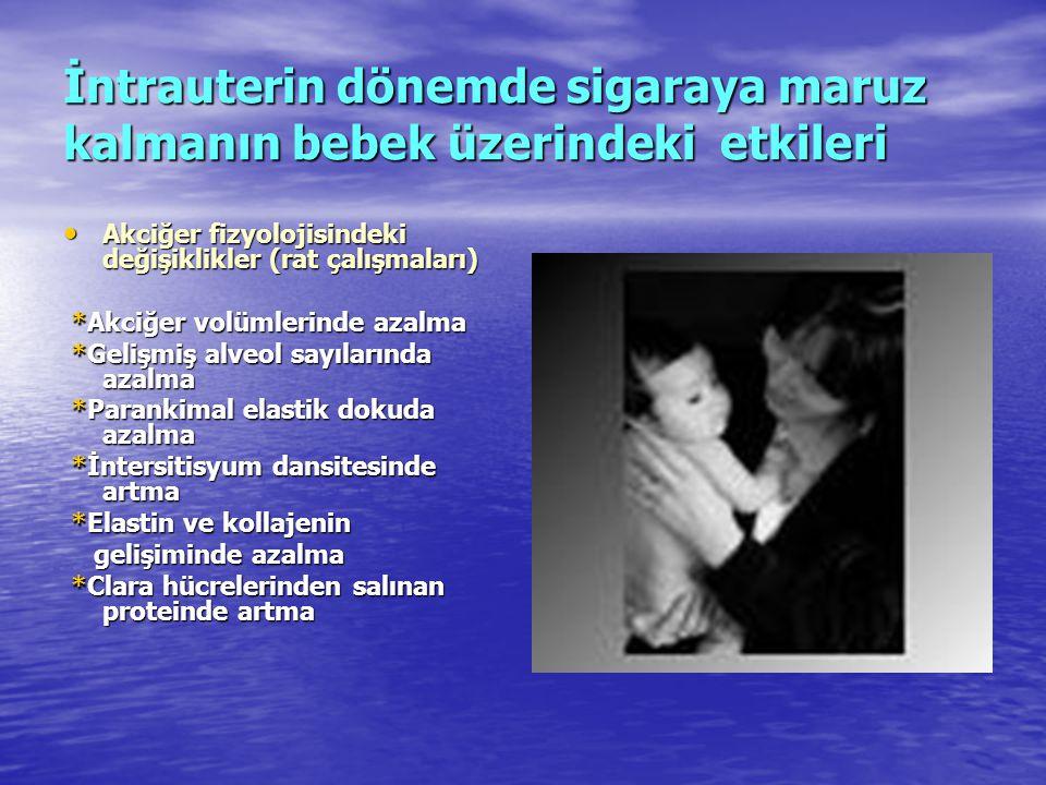 İntrauterin dönemde sigaraya maruz kalmanın bebek üzerindeki etkileri