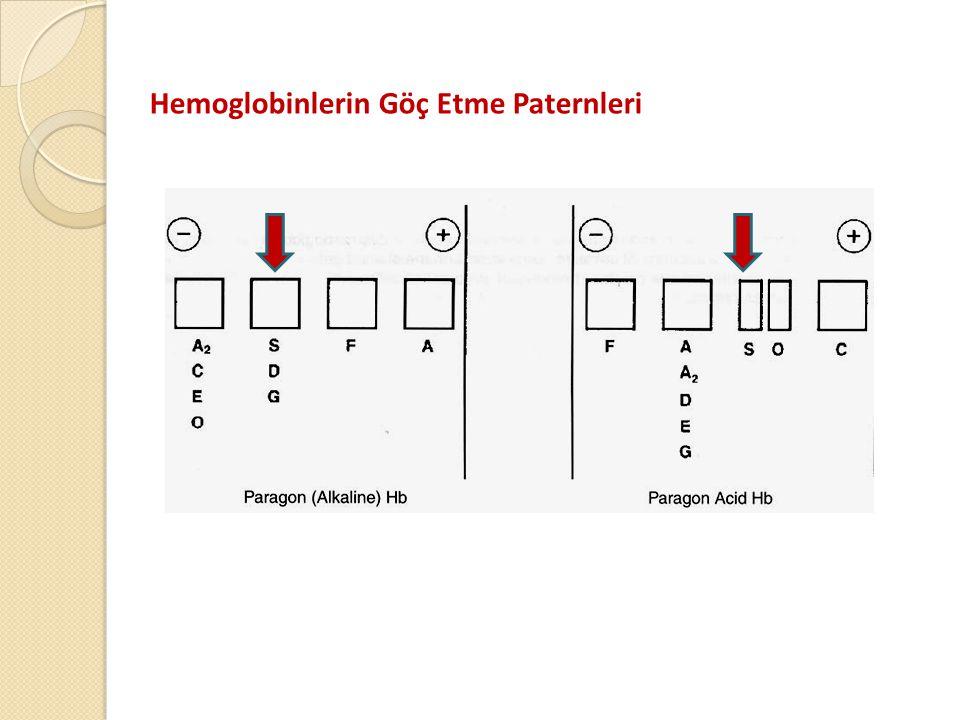 Hemoglobinlerin Göç Etme Paternleri