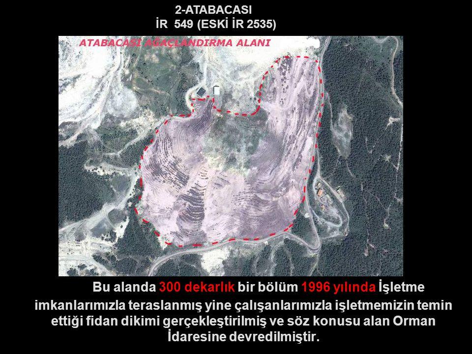 2-ATABACASI İR 549 (ESKİ İR 2535)
