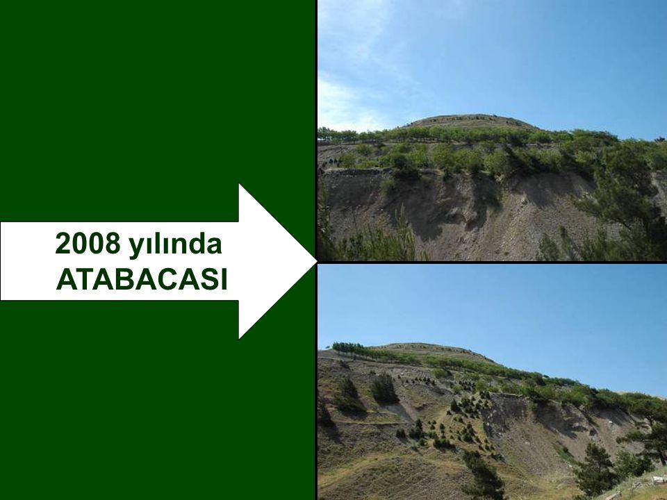 2008 yılında ATABACASI