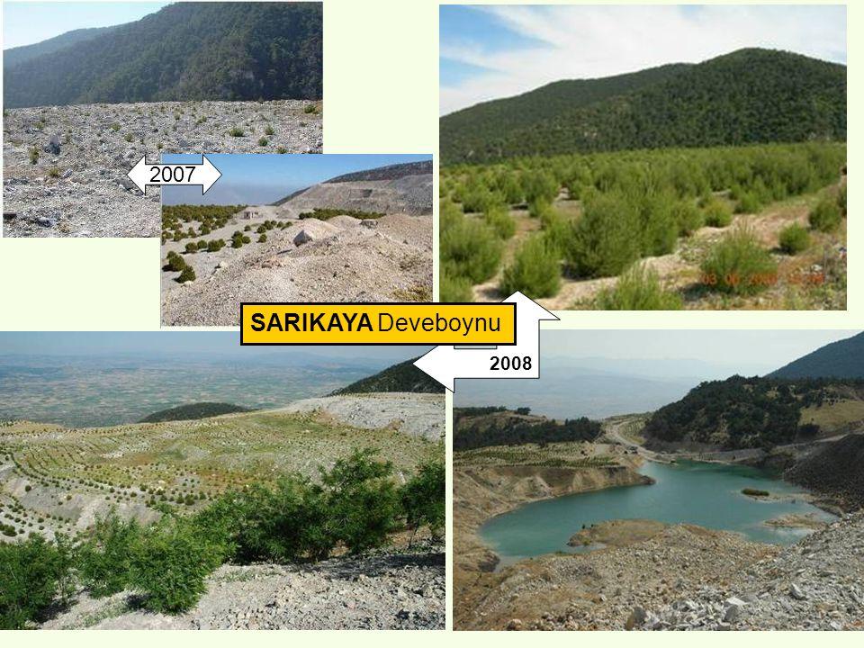 2007 2008 SARIKAYA Deveboynu