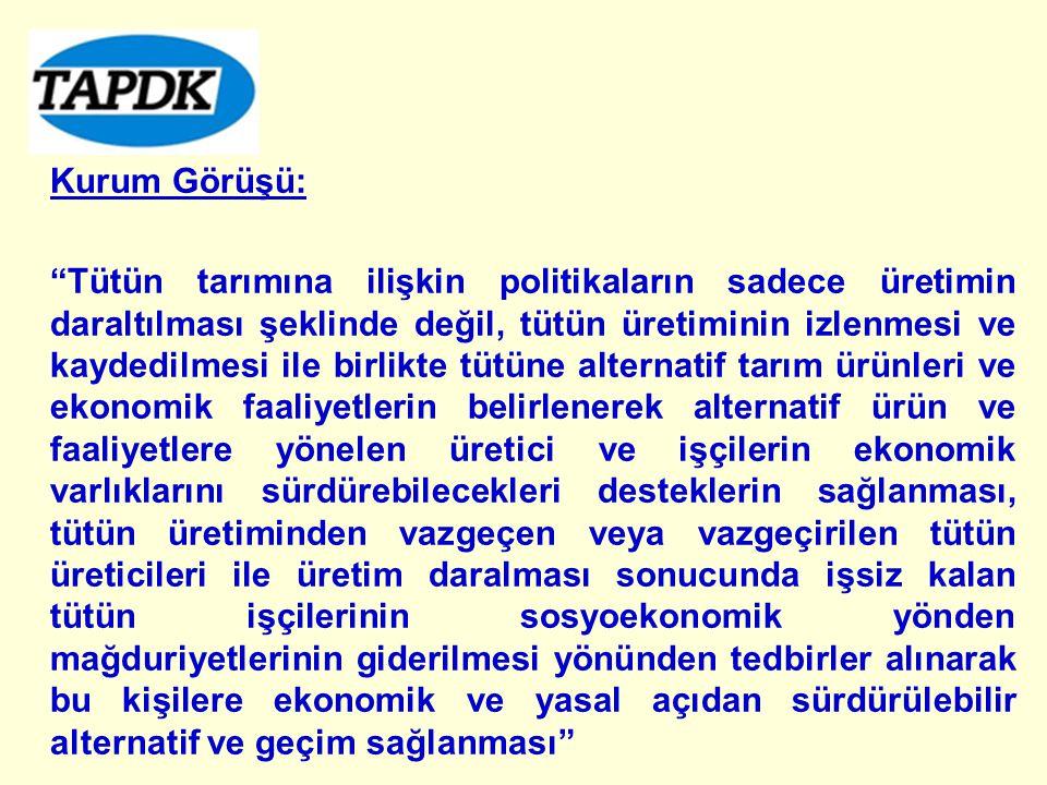 Kurum Görüşü:
