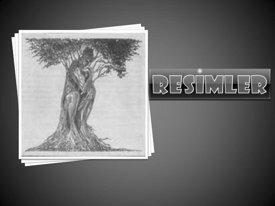 RESiMLER