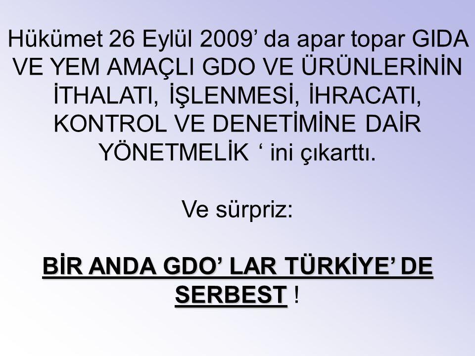 BİR ANDA GDO' LAR TÜRKİYE' DE SERBEST !