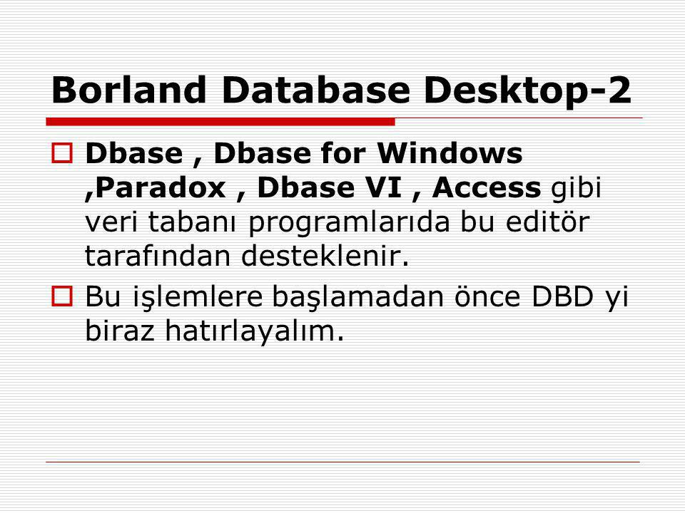 Borland Database Desktop-2