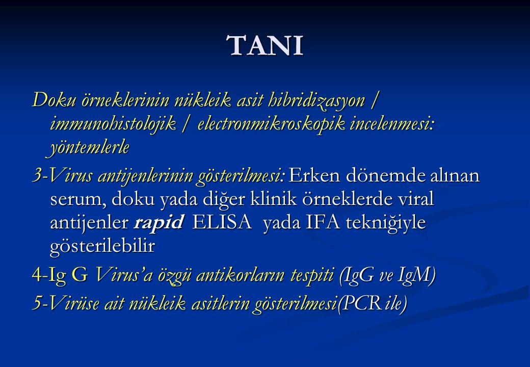TANI Doku örneklerinin nükleik asit hibridizasyon / immunohistolojik / electronmikroskopik incelenmesi: yöntemlerle.