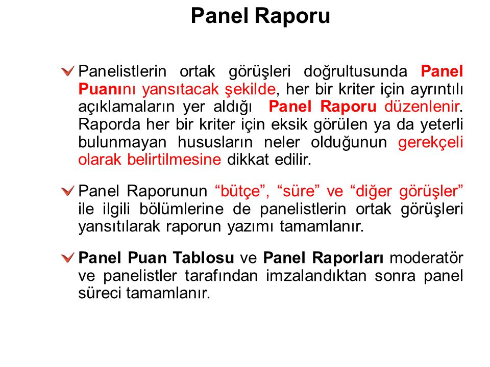 26/03/09 Panel Raporu.