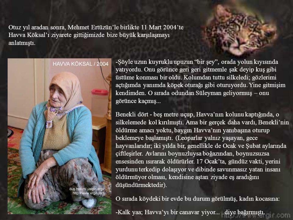 Otuz yıl aradan sonra, Mehmet Ertüzün'le birlikte 11 Mart 2004'te Havva Köksal'ı ziyarete gittiğimizde bize büyük karşılaşmayı anlatmıştı.