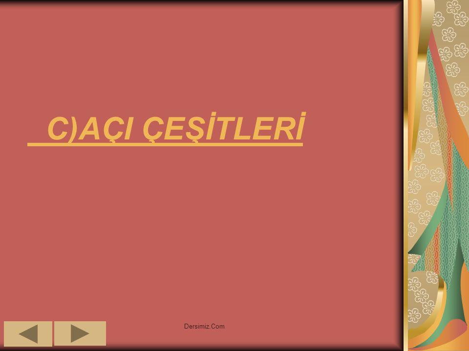 C)AÇI ÇEŞİTLERİ Dersimiz.Com