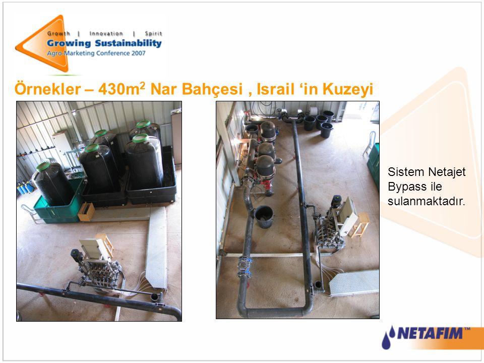 Örnekler – 430m2 Nar Bahçesi , Israil 'in Kuzeyi