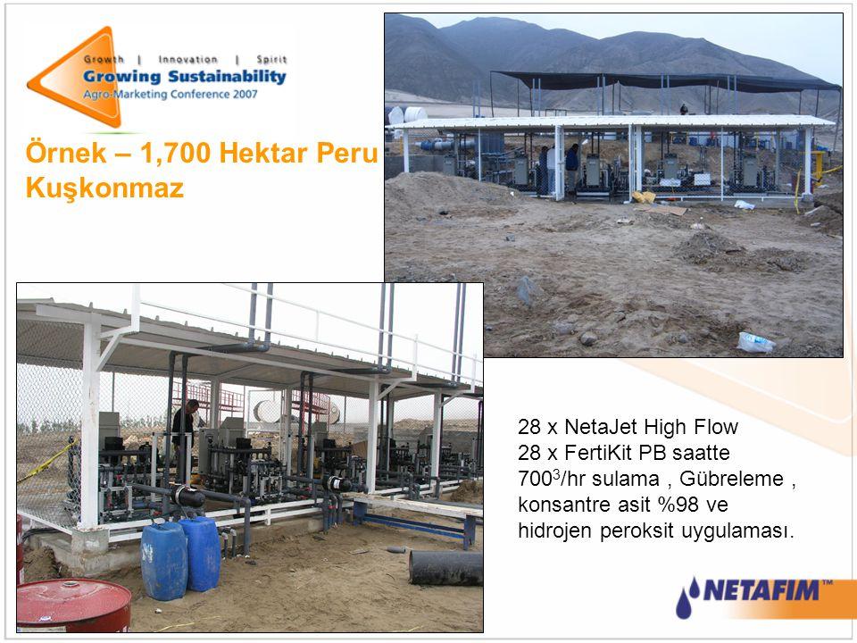 Örnek – 1,700 Hektar Peru Kuşkonmaz