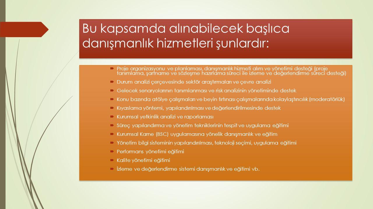 Bu kapsamda alınabilecek başlıca danışmanlık hizmetleri şunlardır: