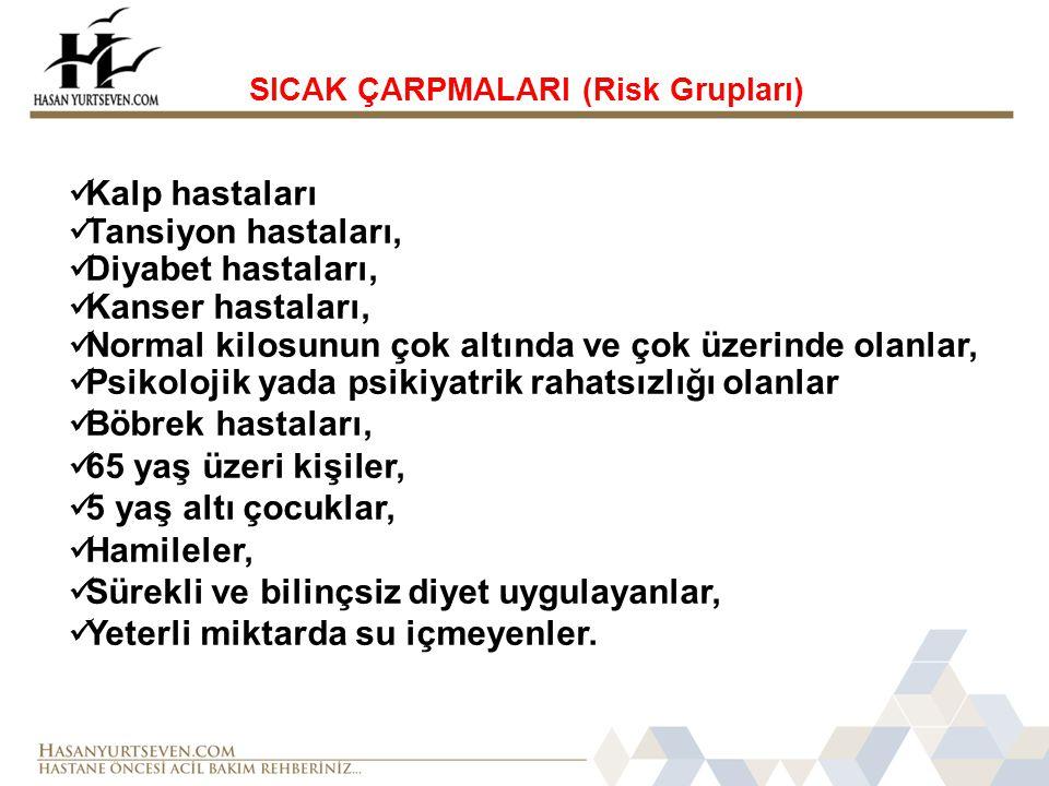 SICAK ÇARPMALARI (Risk Grupları)