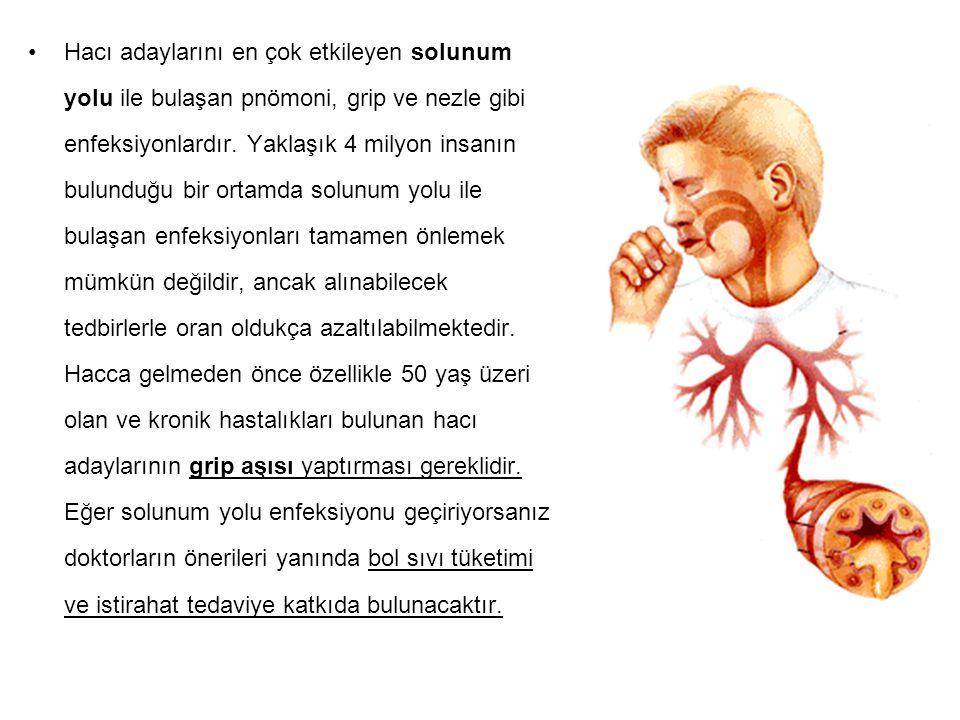 Hacı adaylarını en çok etkileyen solunum yolu ile bulaşan pnömoni, grip ve nezle gibi enfeksiyonlardır.