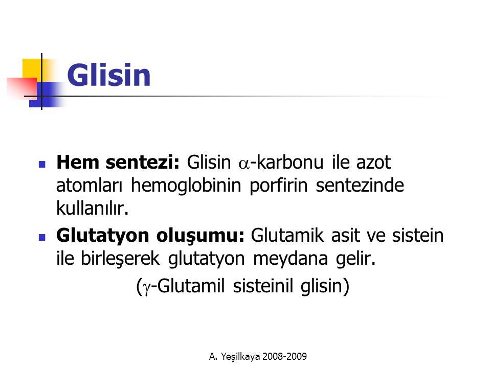 Glisin Hem sentezi: Glisin a-karbonu ile azot atomları hemoglobinin porfirin sentezinde kullanılır.