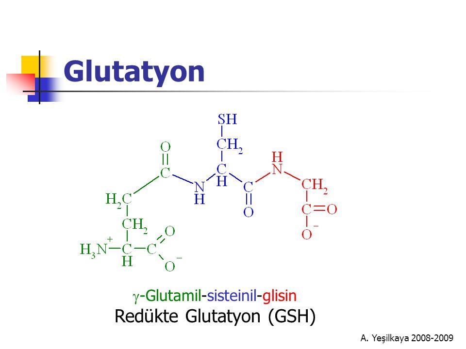 Glutatyon Redükte Glutatyon (GSH) g-Glutamil-sisteinil-glisin