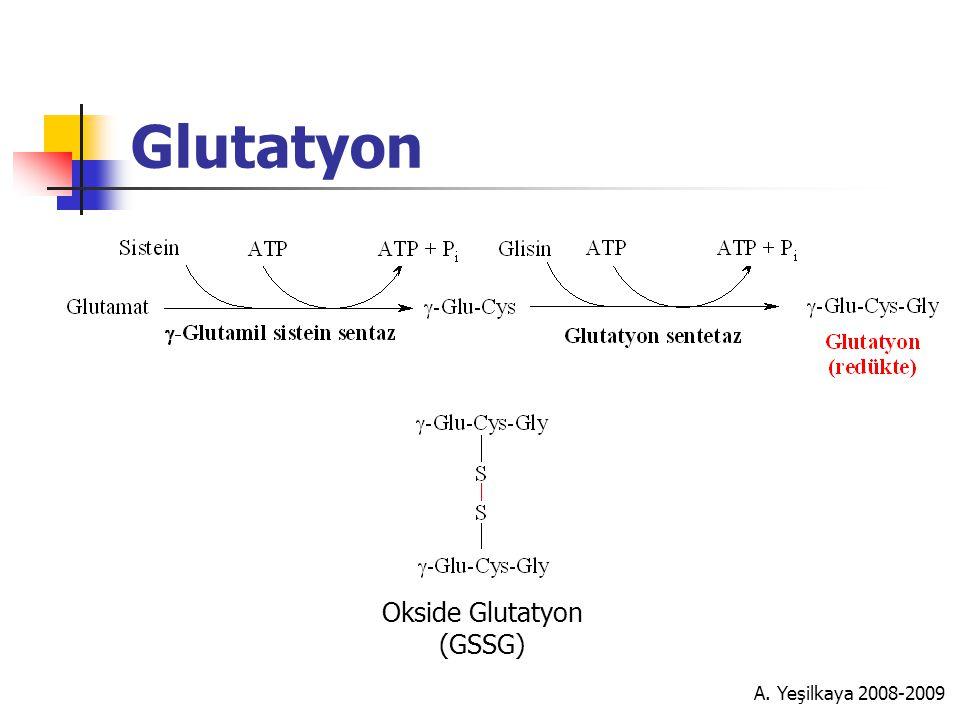 Glutatyon Okside Glutatyon (GSSG) A. Yeşilkaya 2008-2009