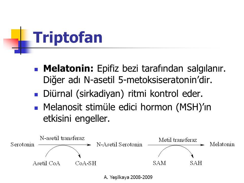 Triptofan Melatonin: Epifiz bezi tarafından salgılanır. Diğer adı N-asetil 5-metoksiseratonin'dir. Diürnal (sirkadiyan) ritmi kontrol eder.