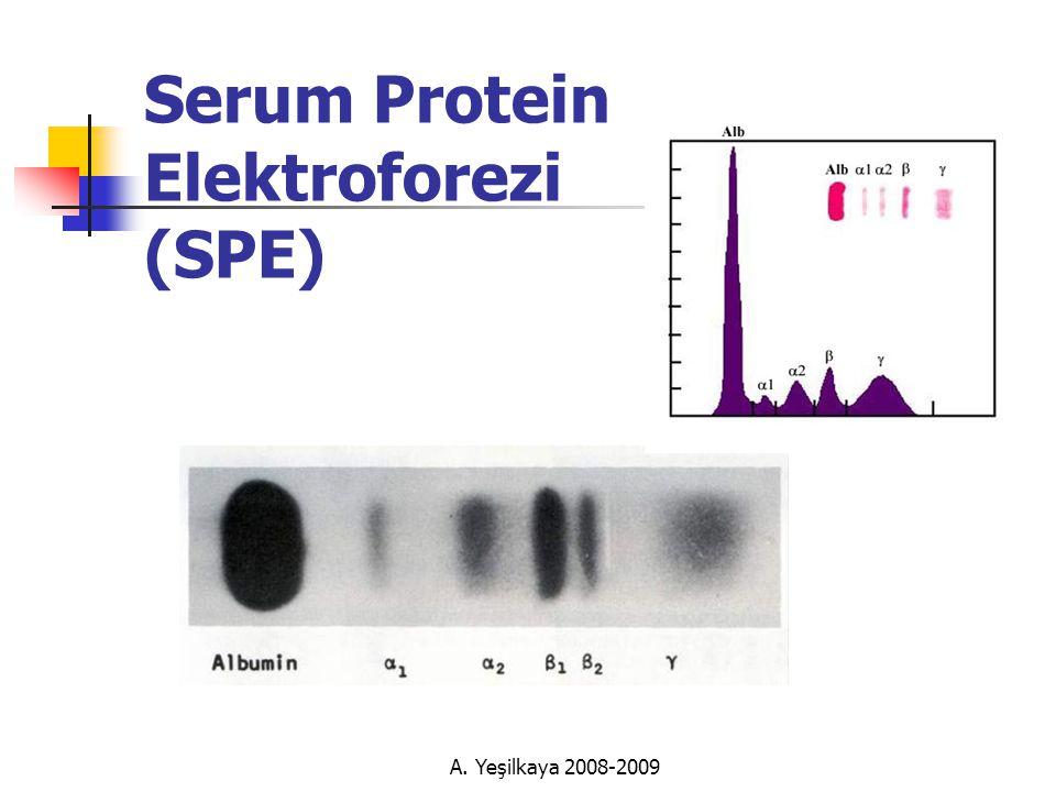 Serum Protein Elektroforezi (SPE)