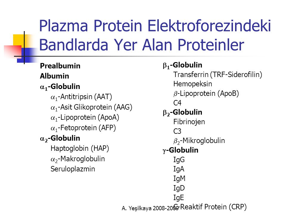 Plazma Protein Elektroforezindeki Bandlarda Yer Alan Proteinler