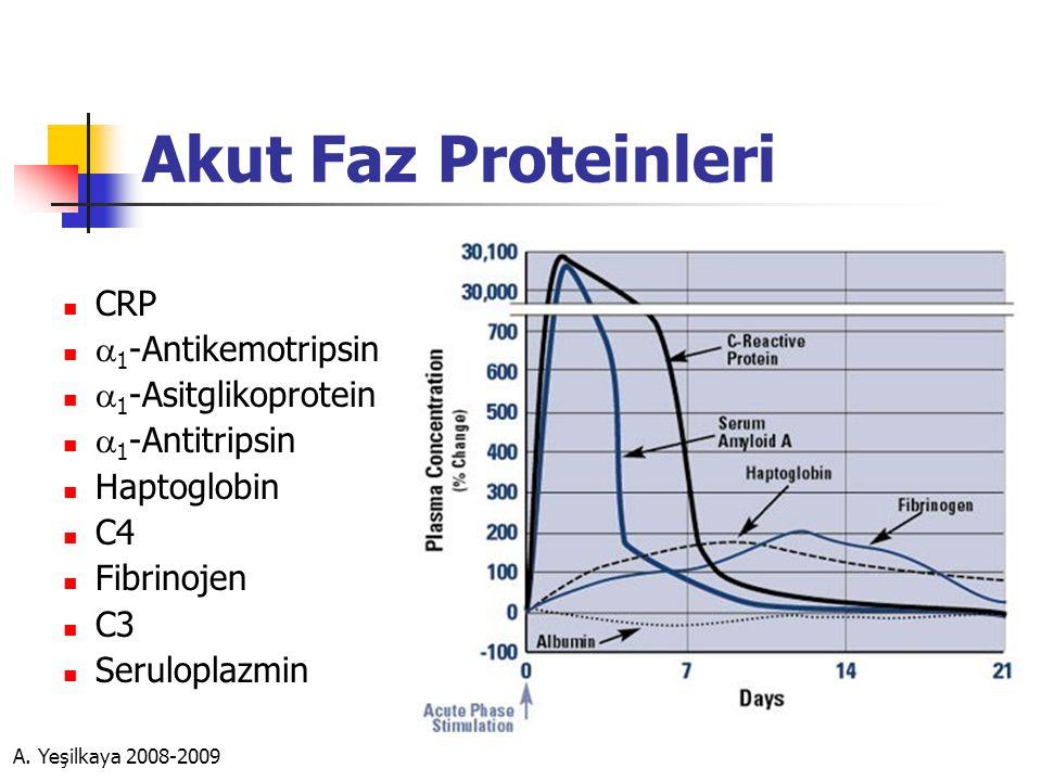 Akut Faz Proteinleri CRP a1-Antikemotripsin a1-Asitglikoprotein