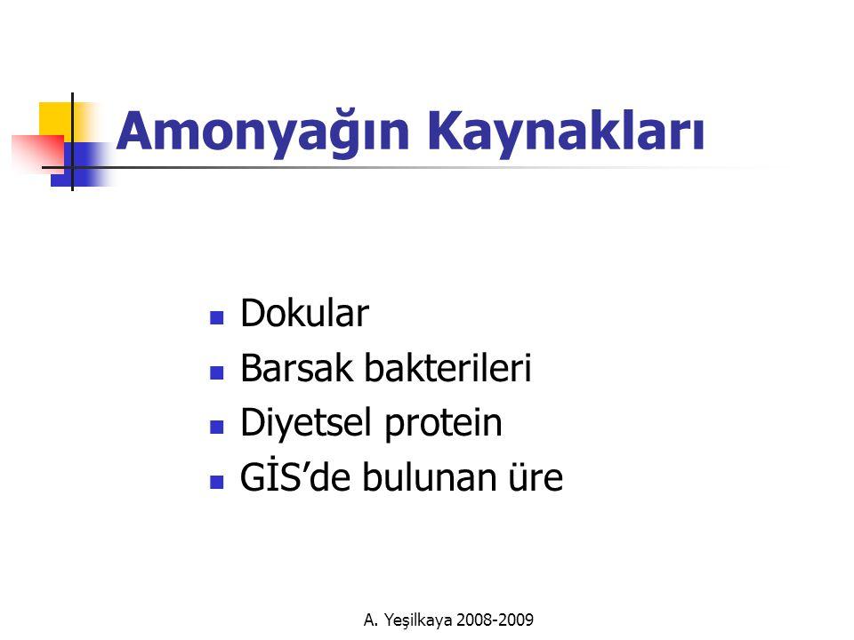 Amonyağın Kaynakları Dokular Barsak bakterileri Diyetsel protein