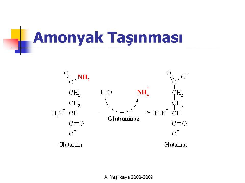 Amonyak Taşınması A. Yeşilkaya 2008-2009