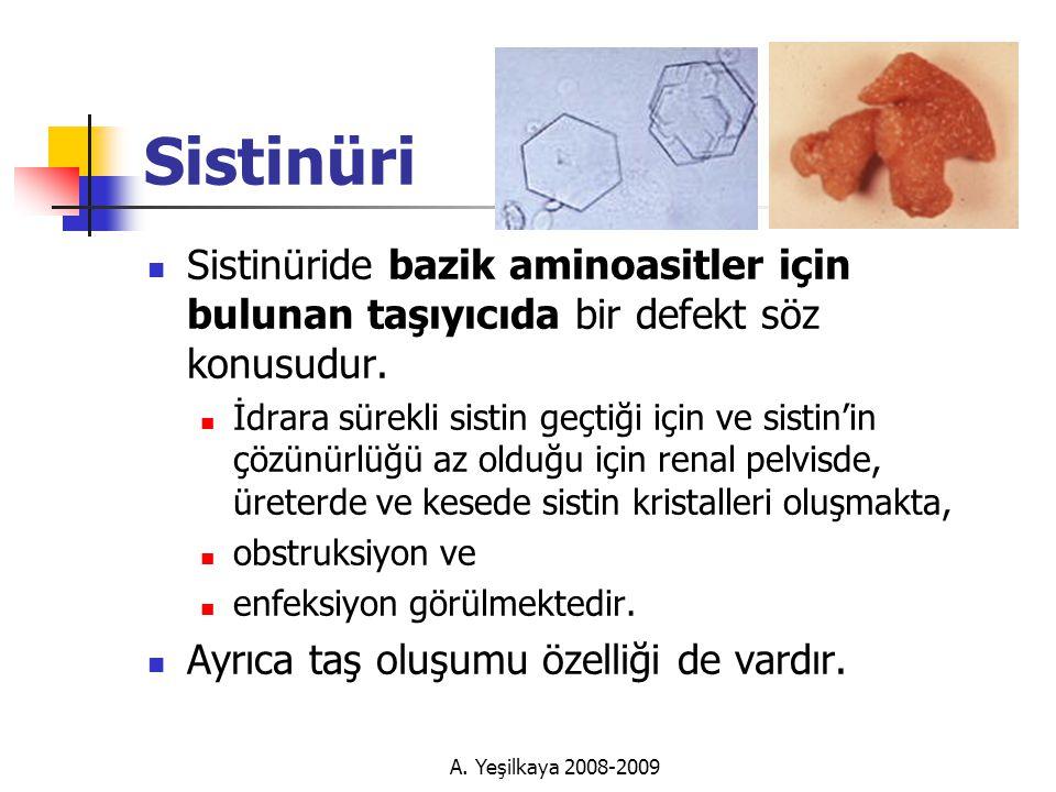 Sistinüri Sistinüride bazik aminoasitler için bulunan taşıyıcıda bir defekt söz konusudur.
