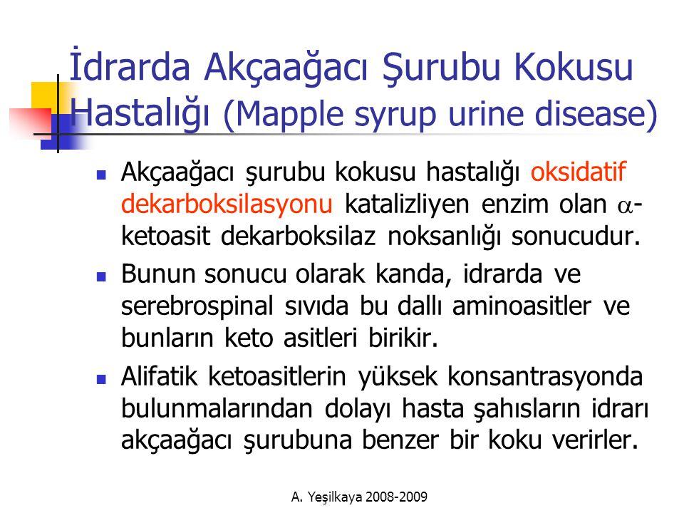 İdrarda Akçaağacı Şurubu Kokusu Hastalığı (Mapple syrup urine disease)