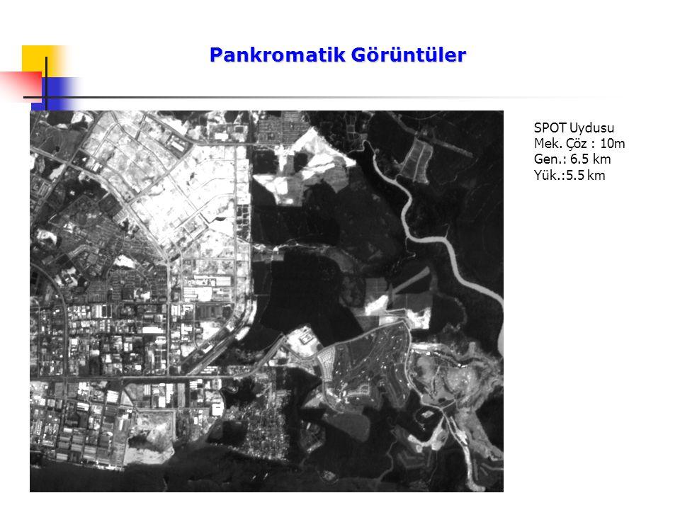Pankromatik Görüntüler