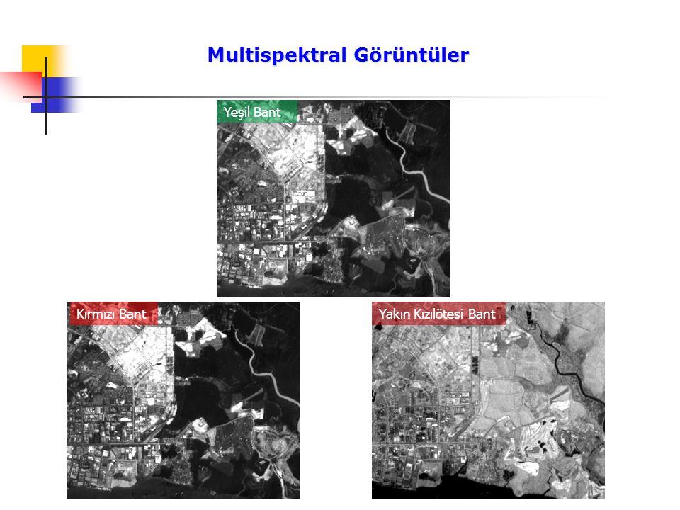Multispektral Görüntüler