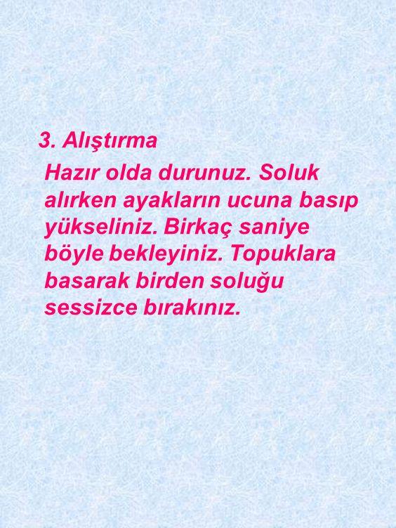 3. Alıştırma