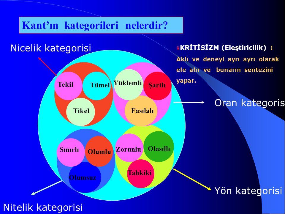 Kant'ın kategorileri nelerdir